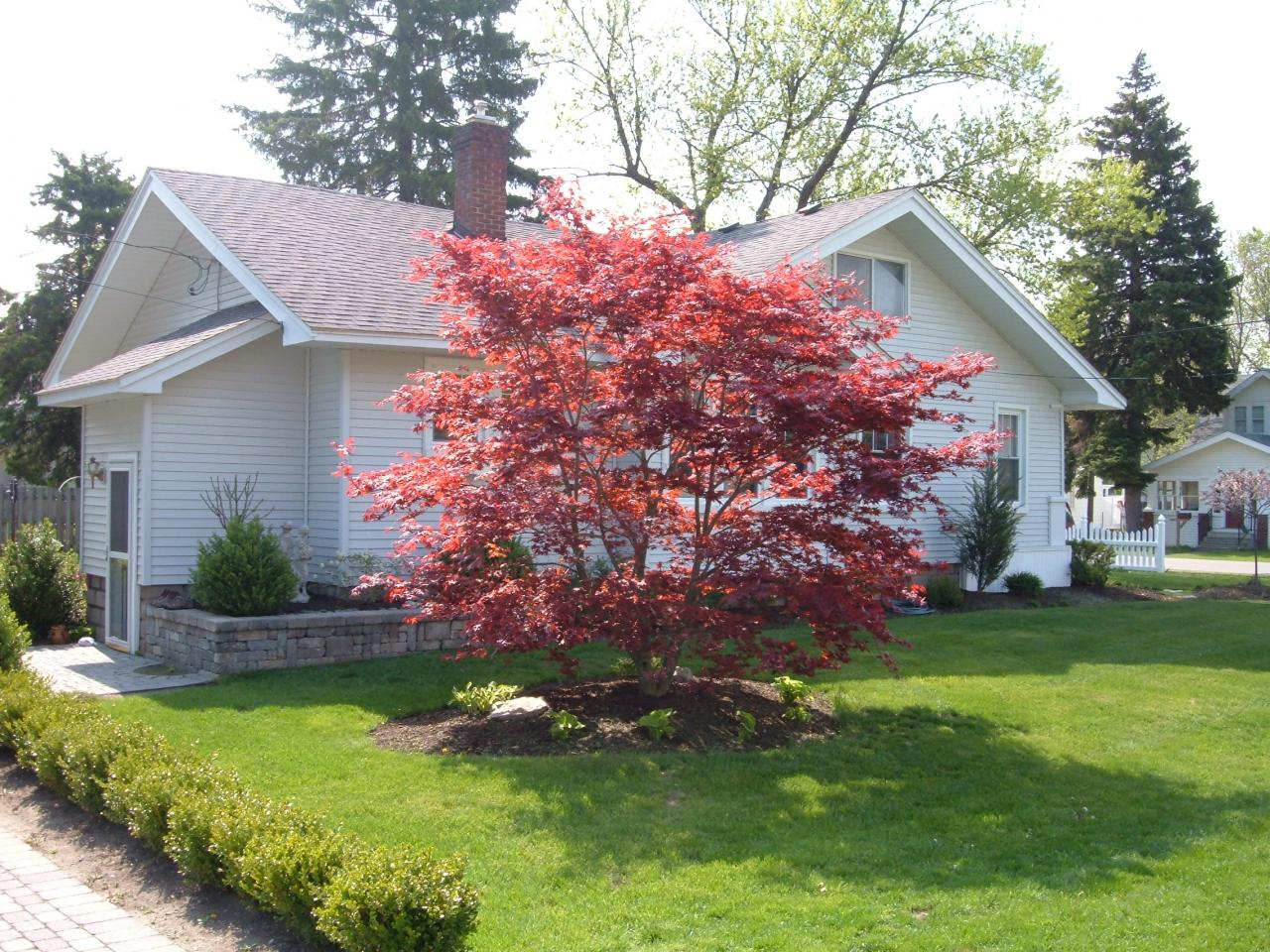 Brett Landscaping Inc Trees Amp Shrubs